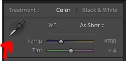 Image example showing where the white balance dropper is in Adobe Lightroom