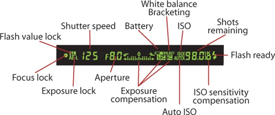 Nikon Viewfinder Showing Shutter Speed