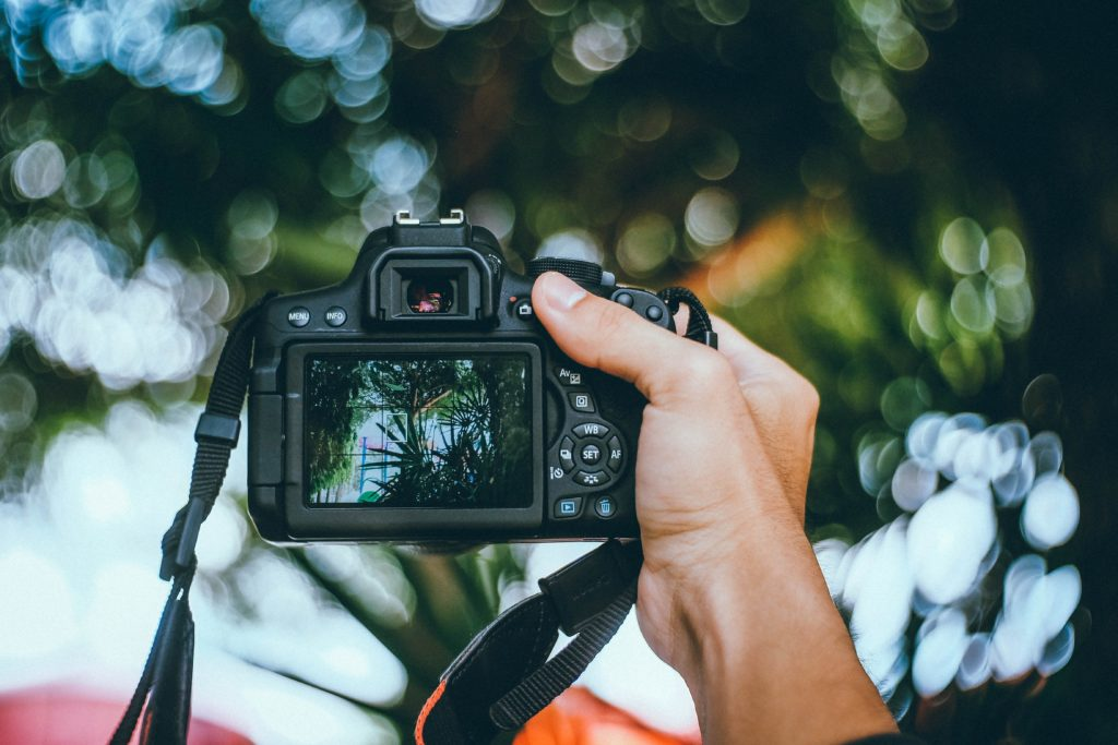 image of a hand holding a camera with an out of focus background with sky and trees in bokeh