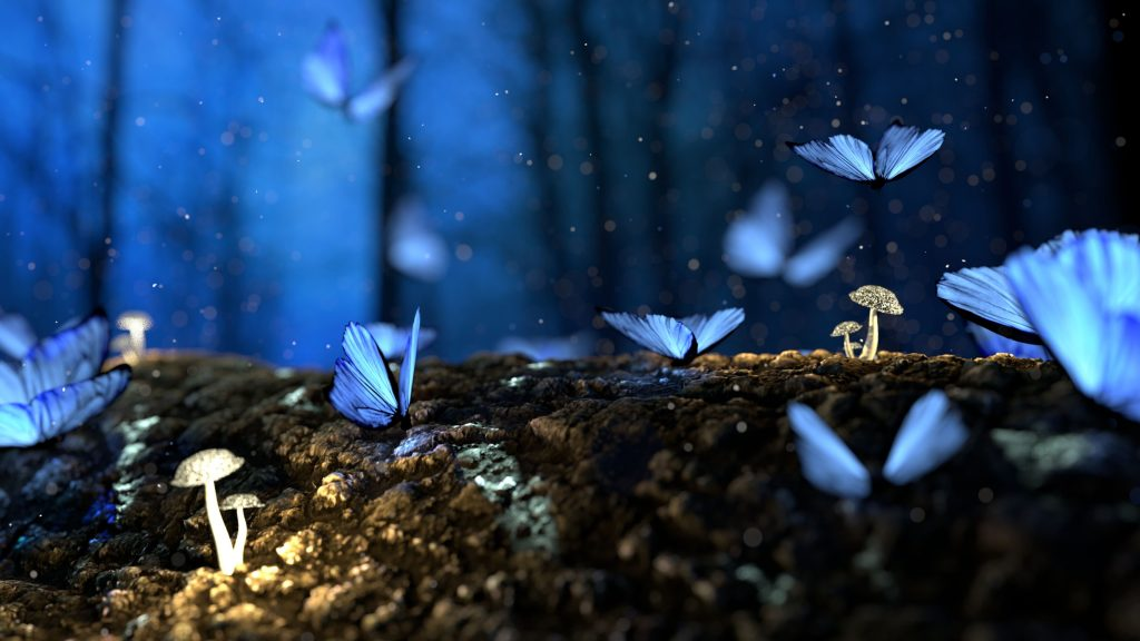 Photo of blue butterflies shot with a slow shutter speed so you can tell they're flapping their wings